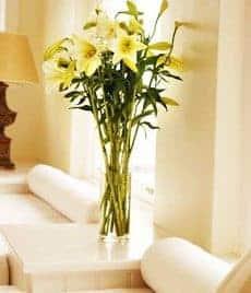 Flores para añadir una nota de color y frescura a la decoración complementos-decoracion-2 Blog Decoracion