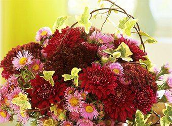 Decorando con flores. Crisamentos   decoracion-jardines Blog Decoracion