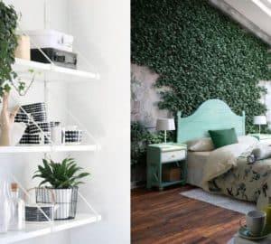 Motivos por los cuales debes decorar tu hogar con plantas curiosidades-decoracion, complementos-decoracion-2 Blog Decoracion