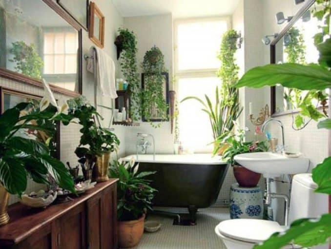 Plantas en el baño ¿por qué no? curiosidades-decoracion Blog Decoracion