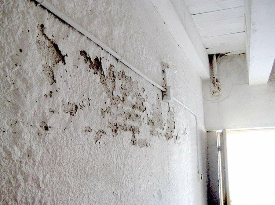Cómo decorar las paredes para disimular las humedades decoracion-paredes, curiosidades-decoracion Blog Decoracion
