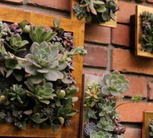 Cuadros hechos con plantas, creatividad y naturaleza para decorar tu hogar curiosidades-decoracion Blog Decoracion